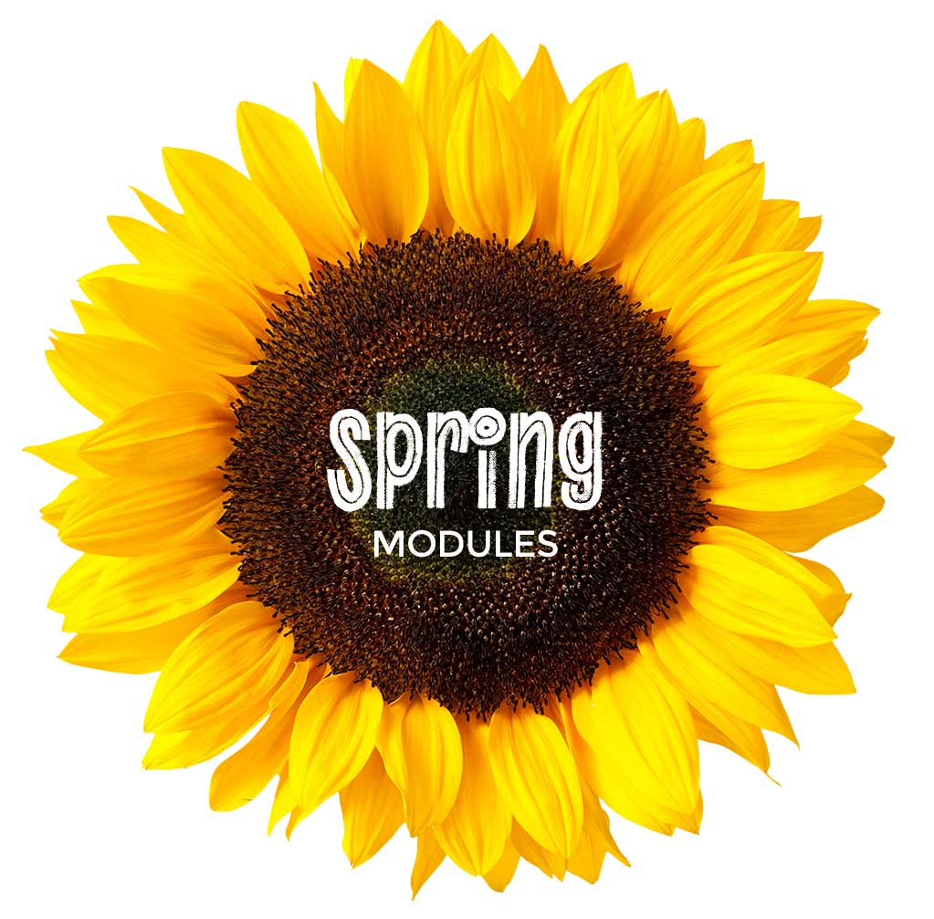 spring modules link
