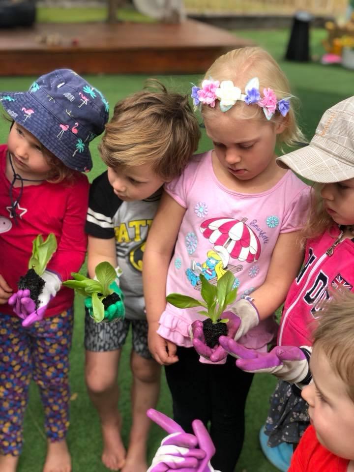 Seedlings and Kids
