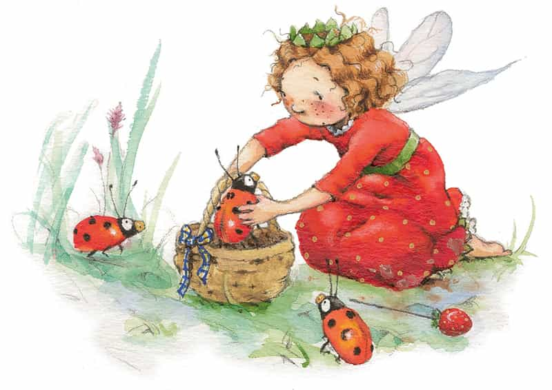 ladybirds-and-evie