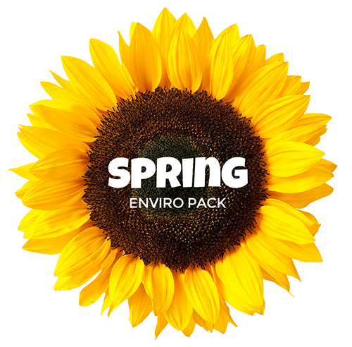 spring-module
