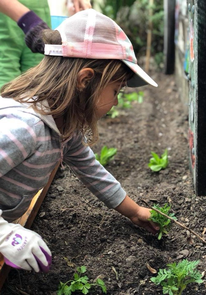 Child planting seedling